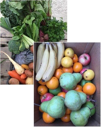 Vegetable & Fruit Combo: Medium Box
